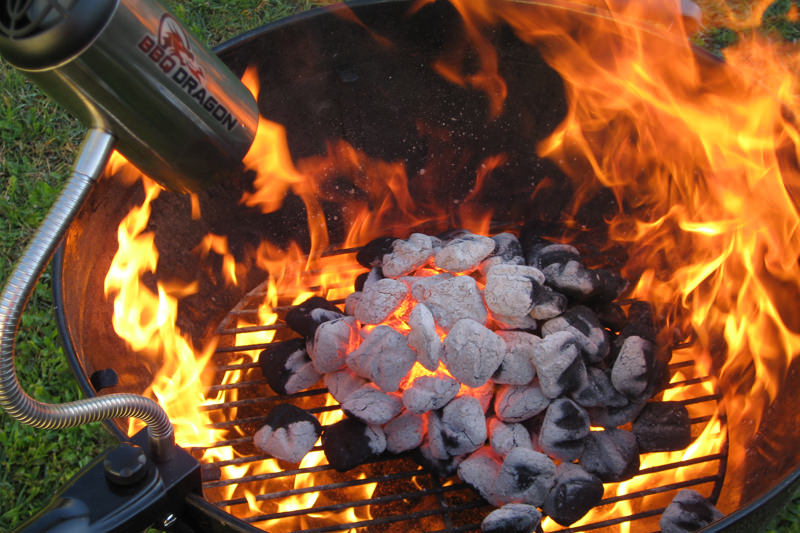 Image result for barbecue grilling